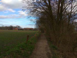 Weg am Schlautbach