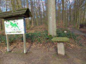 Wanderung Billerbeck - Baumberge, Roxel. 2. März 2020: Rastplatz auf der Leopoldshöhe