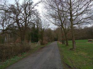 Wanderung Billerbeck - Baumberge, Roxel. 2. März 2020: Auf dem Weg in den Brock