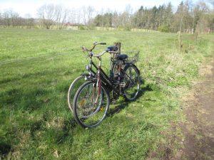 Überall in Münster gibt es Fahrräder, hier tief in der Gemarkung Herkentrup nahe des Glosenbachs