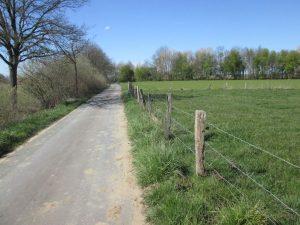 Weg in der Bauerschaft Schonebeck