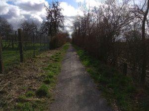Wanderung Billerbeck - Baumberge, Roxel. 2. März 2020: Weg bei Billerbeck