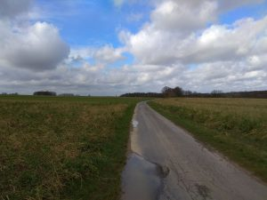 Wanderung Billerbeck - Baumberge, Roxel. 2. März 2020: Auf dem Feldweg