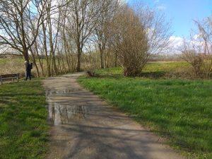 Weg an der Aa zwischen Roxel und Gievenbeck