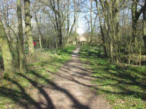 Feldweg bei der ehemaligen Beckfelds Mühle an der Grenze von Hohenholte und Roxel